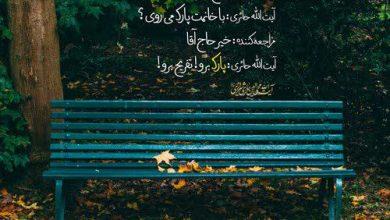 آیت الله حائری شیرازی: با همسرت به پارک برو