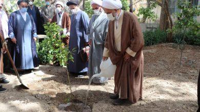 کاشت نهال در مدرسه علمیه منصوریه به مناسبت روز درختکاری